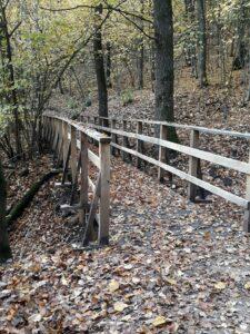 zdjęcie ścieżi 2