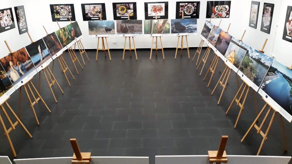 wystawa 4